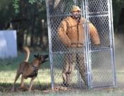 patrol_dog_training01